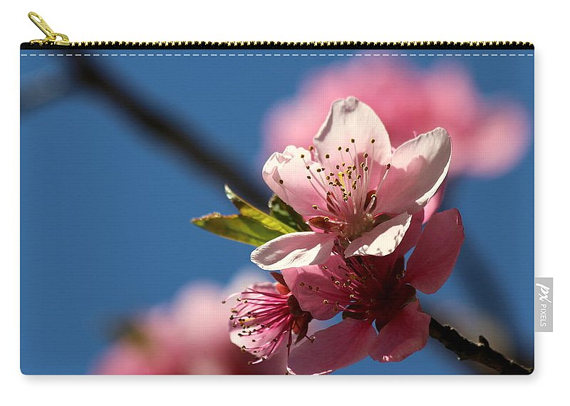 Cherry Carry-all Pouch featuring the photograph Pink Cherry Tree Blossom by Kenny Glotfelty