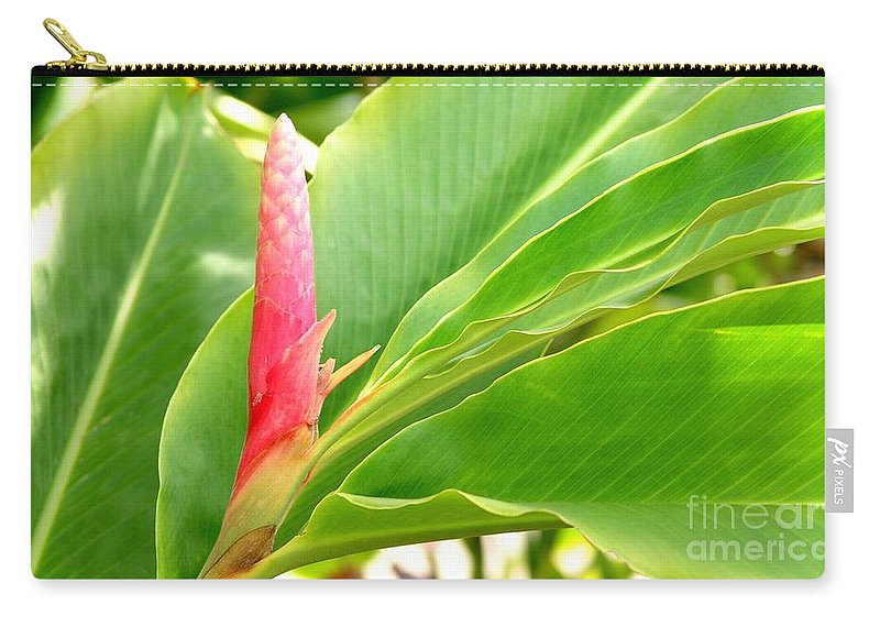 Flowers Carry-all Pouch featuring the photograph Pink Cone Ginger Bud by Mary Deal