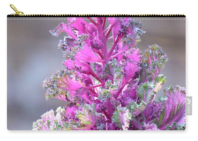 Pink Coned Cabbage Carry-all Pouch featuring the photograph Pink Coned Cabbage by Maria Urso