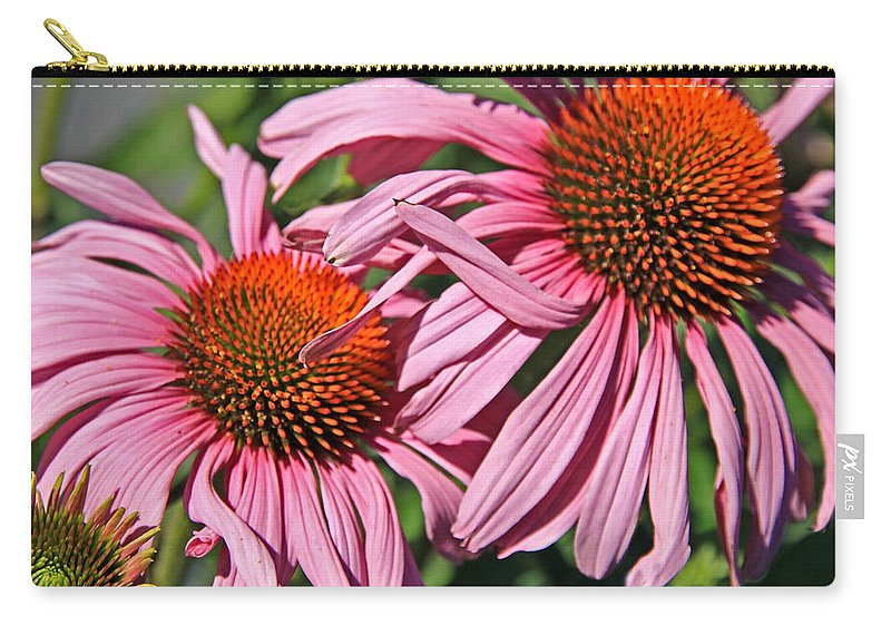 Coneflower Carry-all Pouch featuring the photograph Pink Coneflowers by Athena Mckinzie
