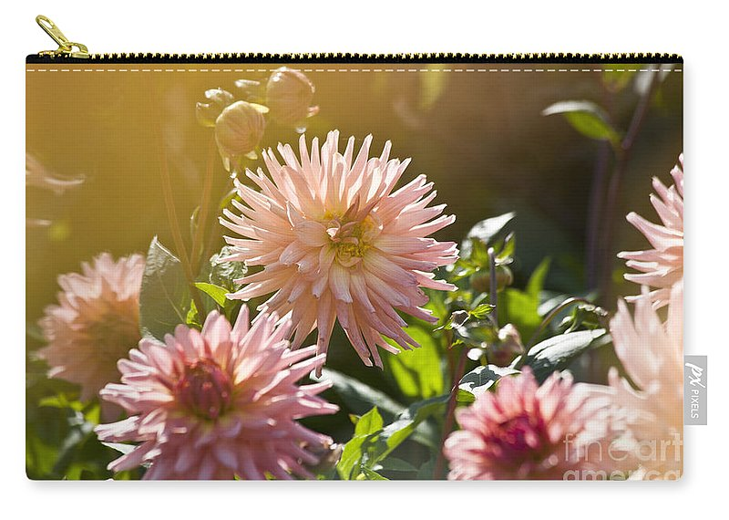 Heiko Carry-all Pouch featuring the photograph Pink Dahlia Garden by Heiko Koehrer-Wagner