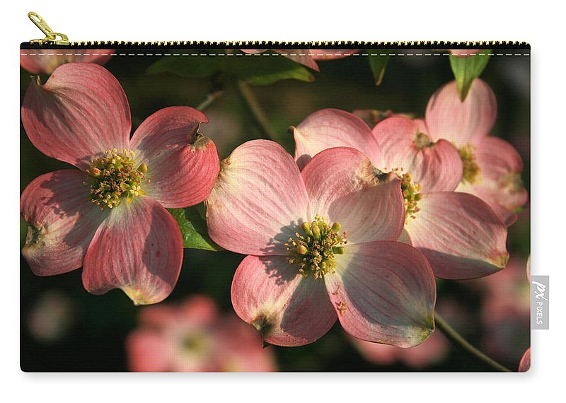 Dogwood Carry-all Pouch featuring the photograph Pink Dogwood by Richard Rutan