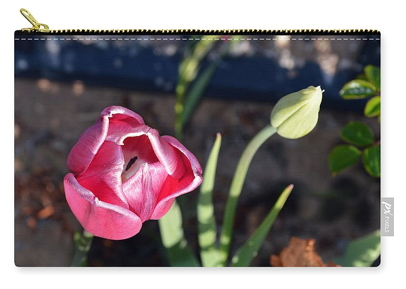 Flower Carry-all Pouch featuring the photograph Pink Flower And Bud by Brent Dolliver
