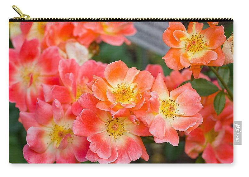 Pink Carry-all Pouch featuring the photograph Pink Flowers by Pati Photography