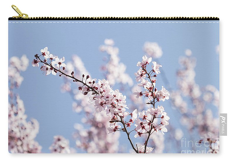 Blossom Carry-all Pouch featuring the photograph Pink For Girls  Blue For Boys by Linda Lees