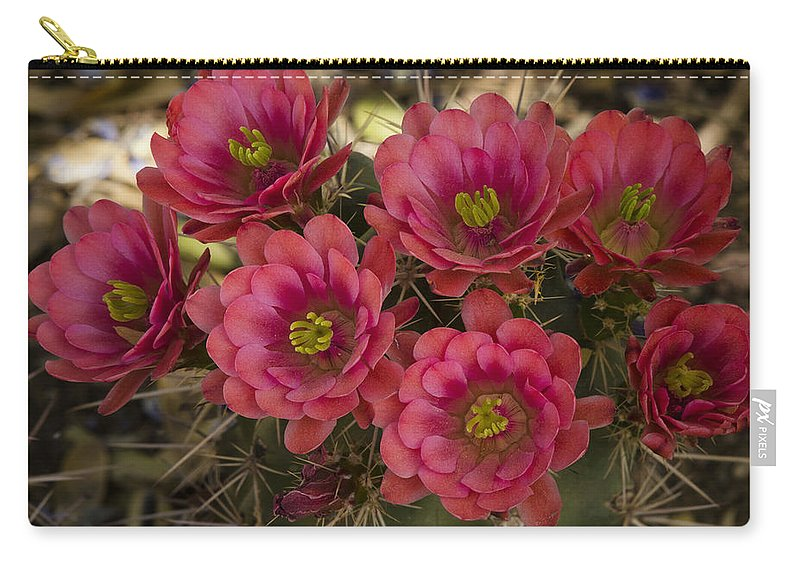 Arizona Carry-all Pouch featuring the photograph Pink Hedgehog Cactus Flowers by Saija Lehtonen