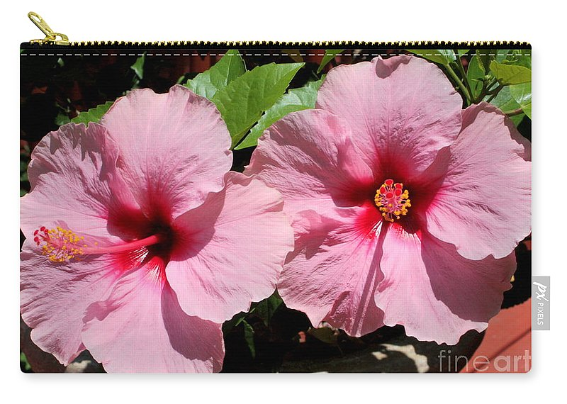 Hibiscus Carry-all Pouch featuring the photograph Pink Hibiscus Blooms by Carol Groenen