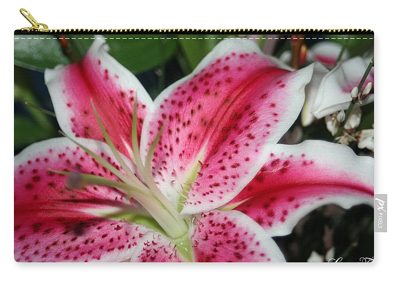 Daylily Carry-all Pouch featuring the photograph Pink Lily by Lesa Fine