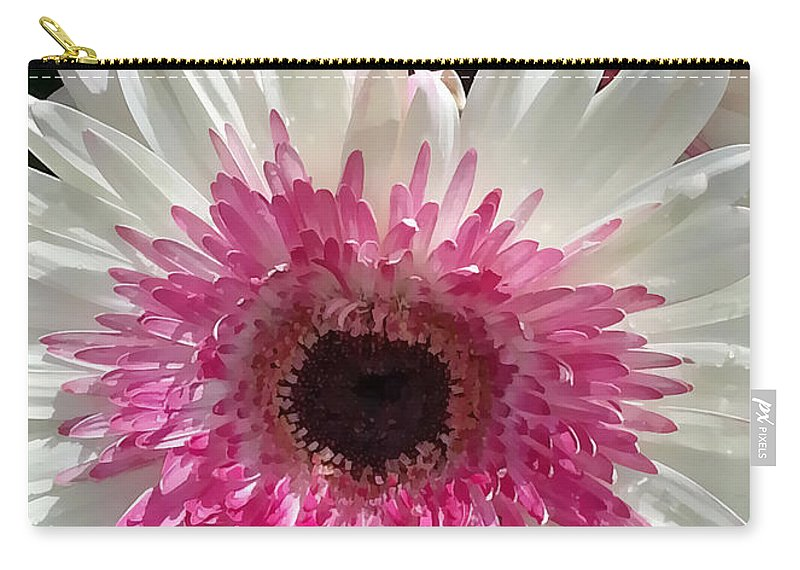 Portrait Carry-all Pouch featuring the photograph Pink N White Gerber Daisy by Sami Martin