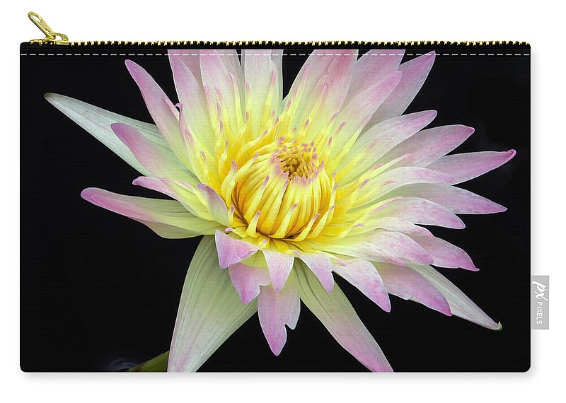 Landscape Carry-all Pouch featuring the photograph Pink N Yellow Water Lily Too by Sabrina L Ryan