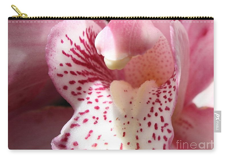 Pink Orchid Carry-all Pouch featuring the photograph Pink Orchid Closeup by Carol Groenen