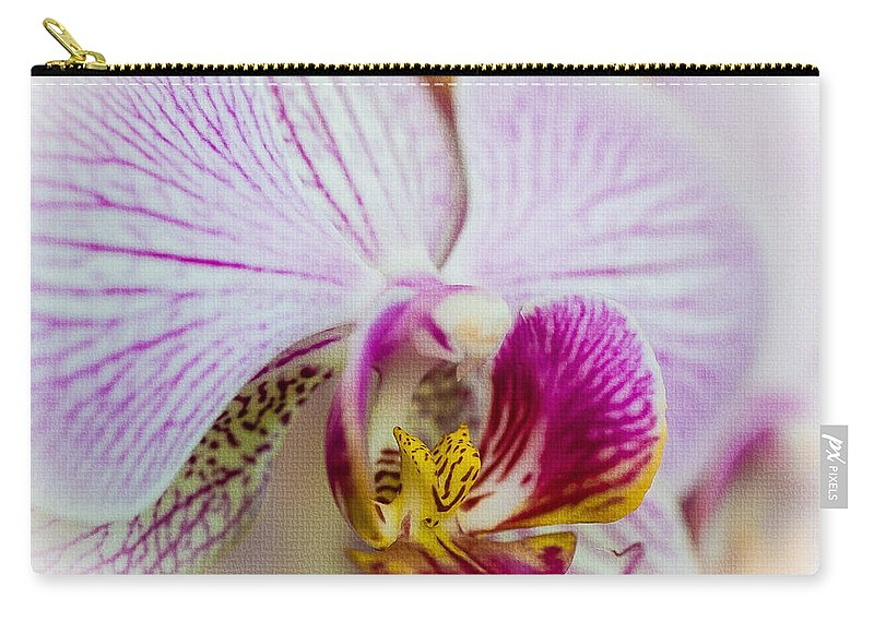 Asteraceae Carry-all Pouch featuring the photograph Pink Orchid by Mark Llewellyn