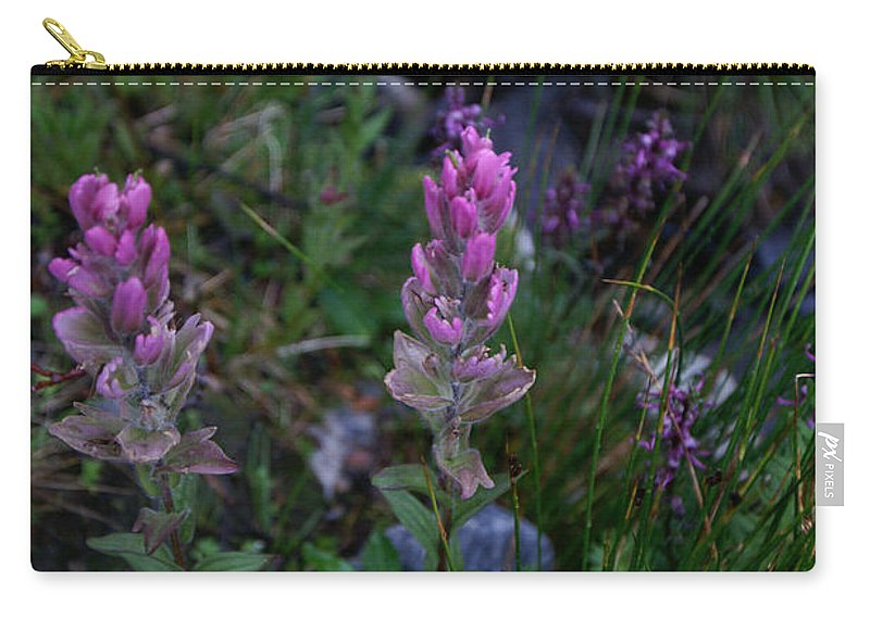 Landscapes Carry-all Pouch featuring the photograph Pink Paintbrush by Jeremy Rhoades