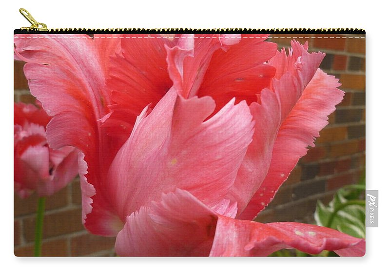 Flower Carry-all Pouch featuring the photograph Pink Parrot Tulip by Lingfai Leung