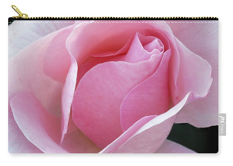 Rose Carry-all Pouch featuring the photograph Pink Passion by Dave Mills