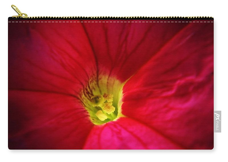 Petunia Carry-all Pouch featuring the photograph Pink Petunia by Chris Berry