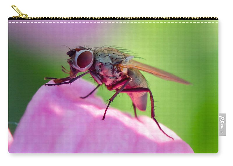 Pink Carry-all Pouch featuring the photograph Pink Reflection On Flies Body. by Michael Moriarty