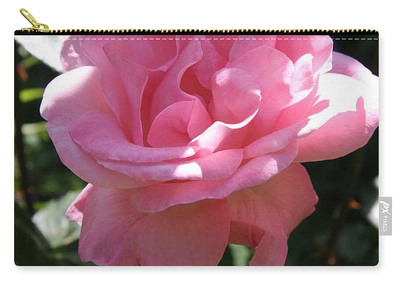 Rose Carry-all Pouch featuring the photograph Pink Rose by Christiane Schulze Art And Photography