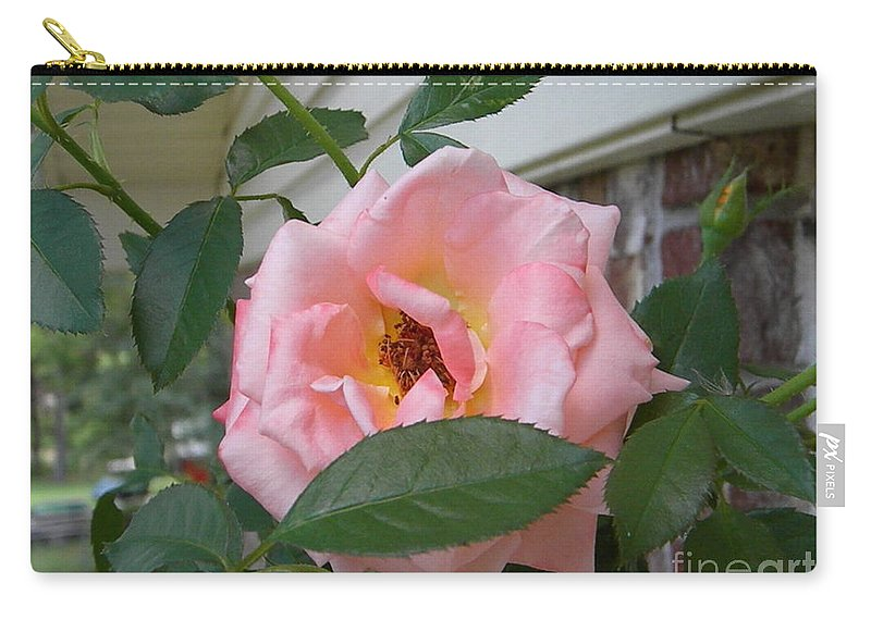 Rose Carry-all Pouch featuring the photograph Pink Rose by Nathanael Smith