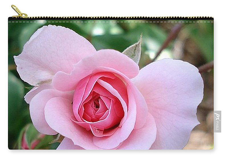 Pink Carry-all Pouch featuring the photograph Pink Rose - Square Print by Nikki Vig