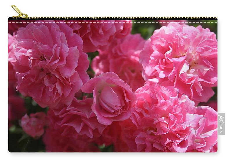 Rose Carry-all Pouch featuring the photograph Pink Roses In Sunlight by Taiche Acrylic Art