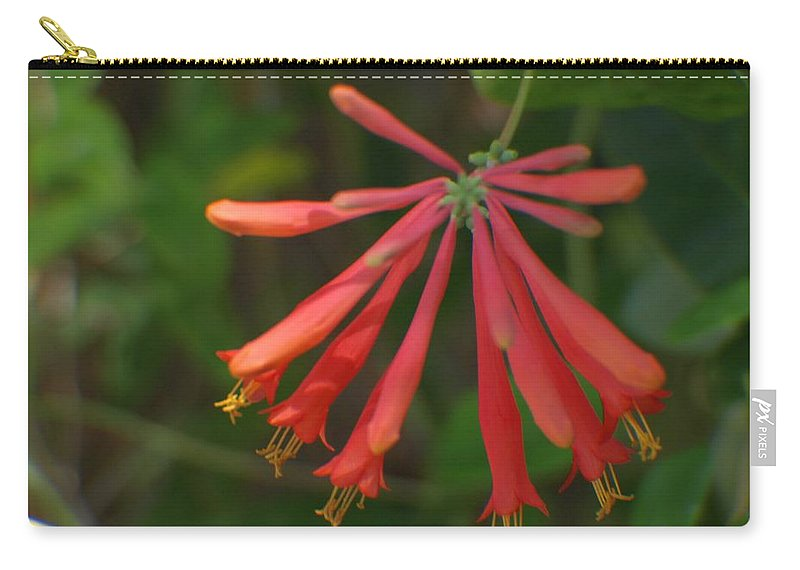 Flower Carry-all Pouch featuring the photograph Pink Tube Flower by Jo Jurkiewicz