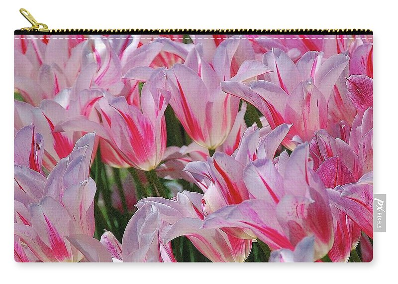 Pink Tulips Carry-all Pouch featuring the photograph Pink Tulips 3 by Allen Beatty