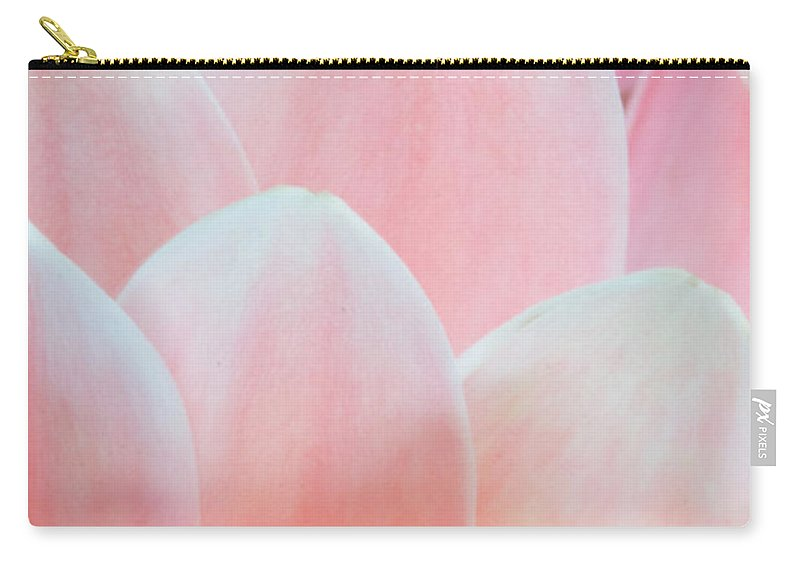 100mm Carry-all Pouch featuring the photograph Petal Pathways by Kyra Savolainen
