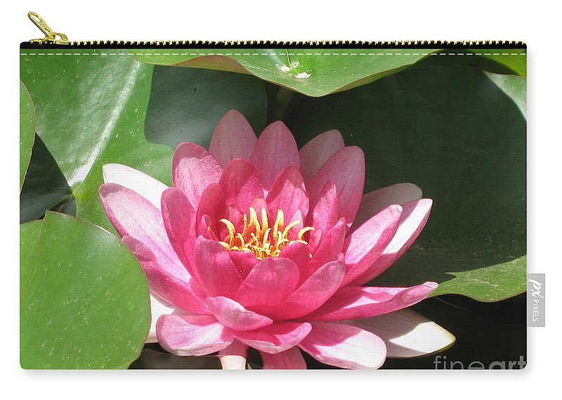 Waterlily Carry-all Pouch featuring the photograph Pink Waterlily by Christiane Schulze Art And Photography