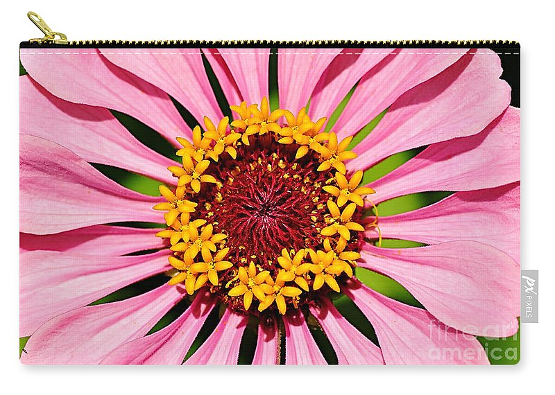 Photography Carry-all Pouch featuring the photograph Pink Zinnia Macro by Kaye Menner