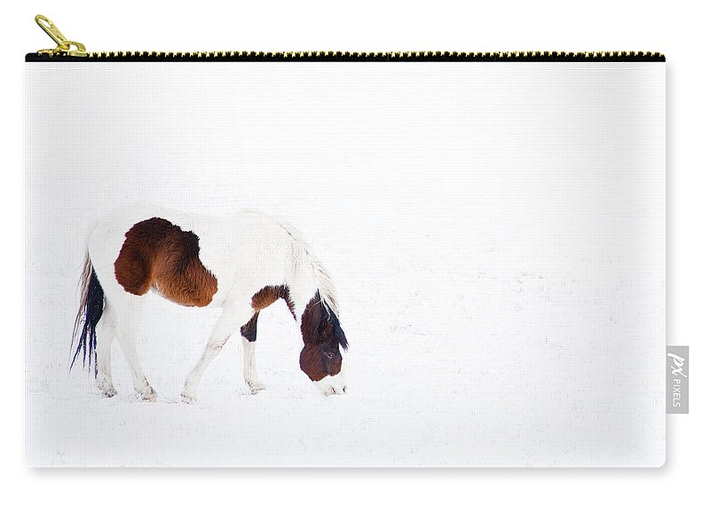 Small Horse Carry-all Pouch featuring the photograph Pinto Pony by Theresa Tahara