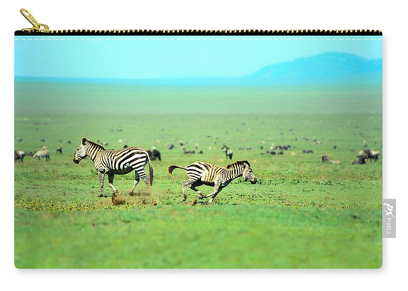 Africa Carry-all Pouch featuring the photograph Playfull Zebras by Sebastian Musial
