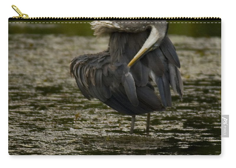 Great Blue Heron Carry-all Pouch featuring the photograph Plumage Perfection by Crystal Heitzman Renskers