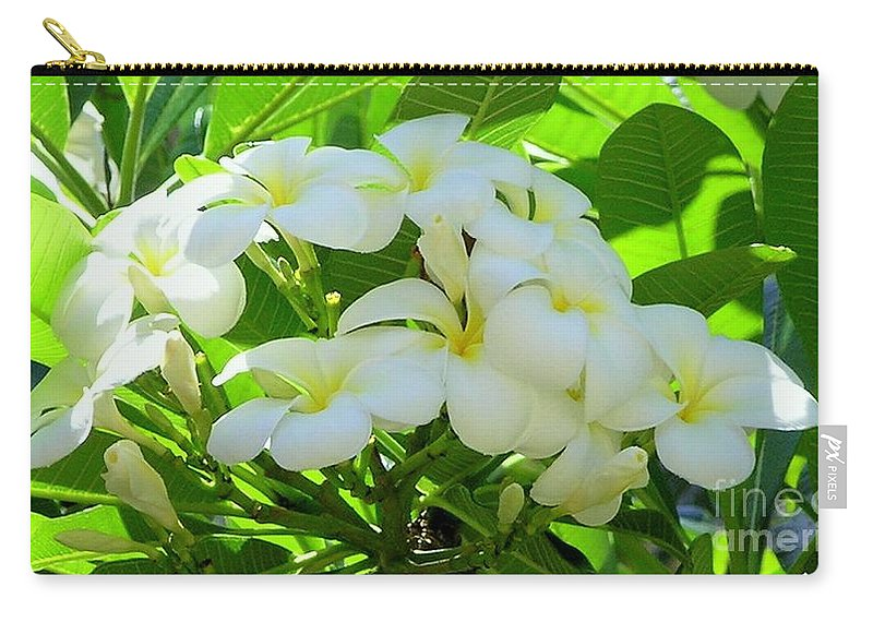 Plumeria Carry-all Pouch featuring the photograph Plumeria Greeting The Morning by Mary Deal