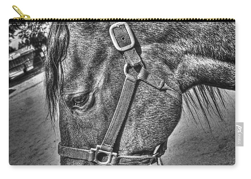 Horse Carry-all Pouch featuring the photograph Poco by Tommy Anderson