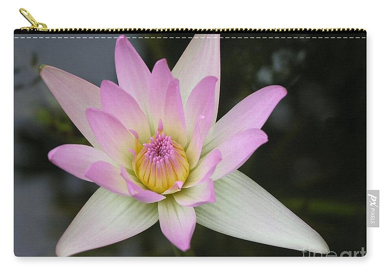Pointed Pink Lily Carry-all Pouch featuring the photograph Pointed Pink Lily by Mary Deal