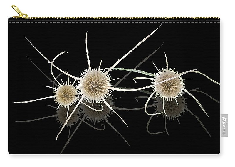 Pokey Weed Carry-all Pouch featuring the photograph Pokey Weed Reflection by Martin Brockhaus