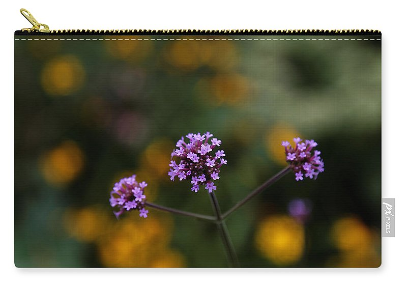 Purple Flowers Carry-all Pouch featuring the photograph Pom Pom Plant by Scott Hill