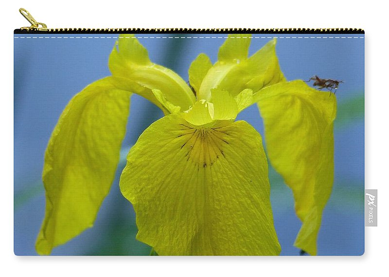 Outdoors Carry-all Pouch featuring the photograph Pond Iris by Charles Ford