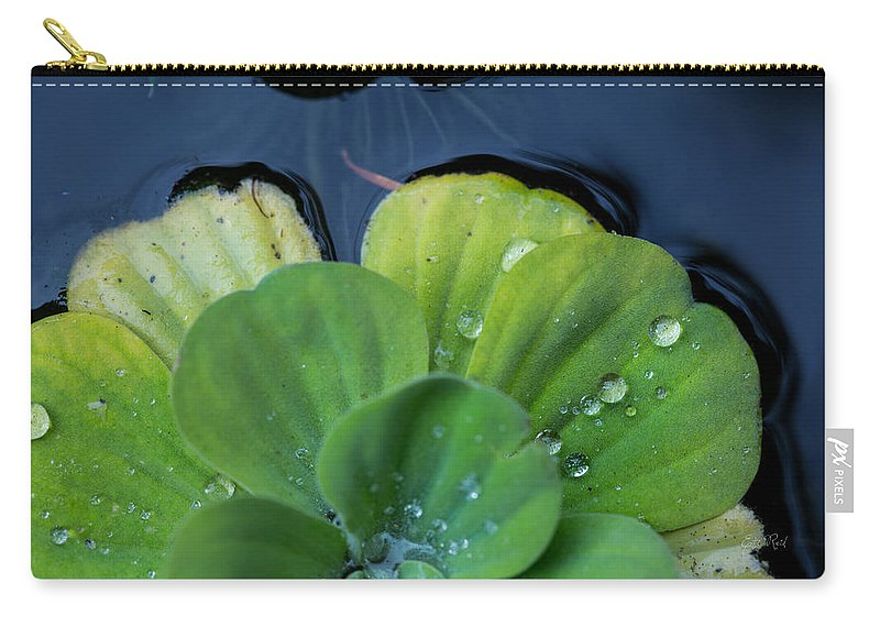Pistia Carry-all Pouch featuring the photograph Pond Lettuce by Eti Reid