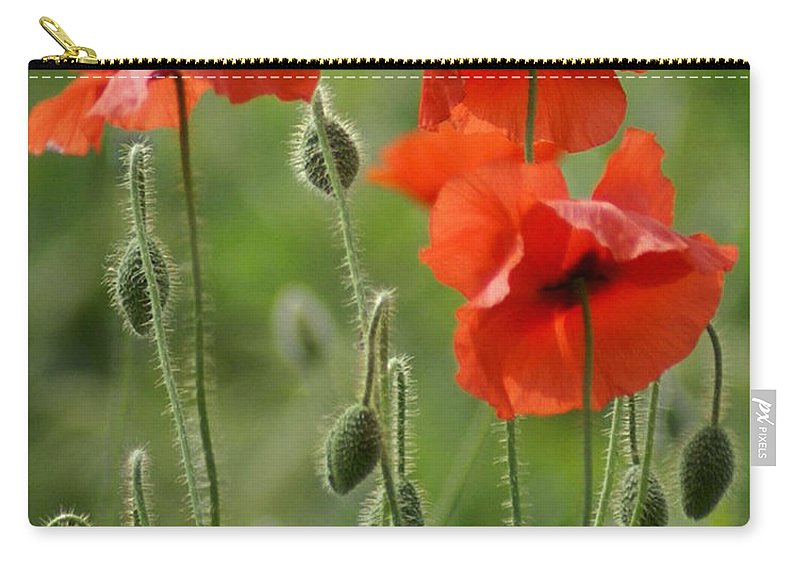 Poppies Carry-all Pouch featuring the photograph Poppies 2 by Carol Lynch