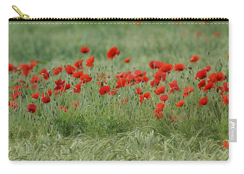 Poppies Carry-all Pouch featuring the photograph Poppies by Carol Lynch