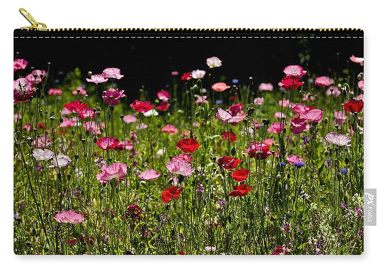 Poppies Carry-all Pouch featuring the photograph Poppies Gettin Sun by Rich Franco