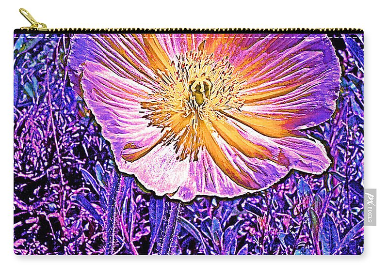 Flowers Carry-all Pouch featuring the photograph Poppy 3 by Pamela Cooper
