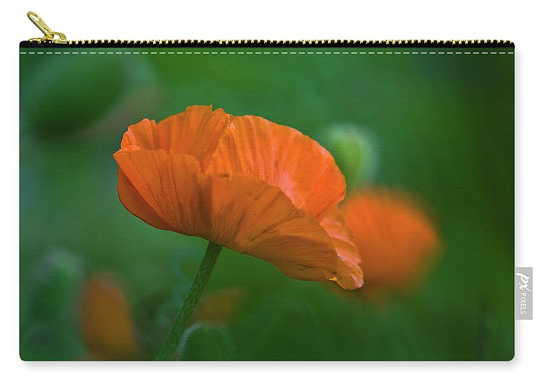 Poppy Carry-all Pouch featuring the photograph Poppy Flower by Heiko Koehrer-Wagner