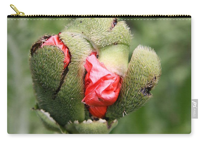 Flowers Carry-all Pouch featuring the photograph Poppybud by Christiane Schulze Art And Photography