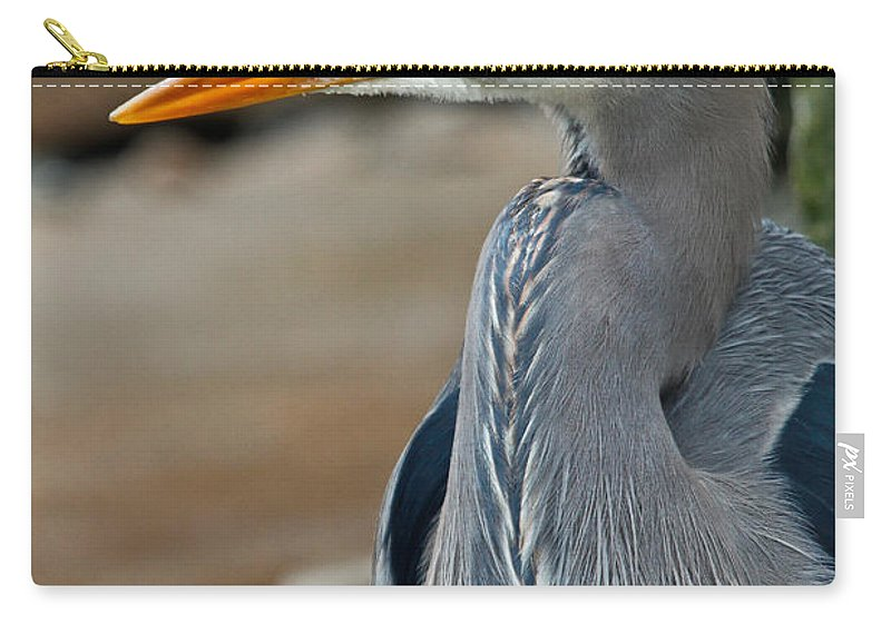 Blue Heron Carry-all Pouch featuring the photograph Portrait Of A Blue Heron by Athena Mckinzie