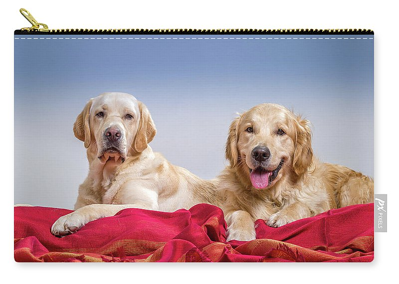 Photography Carry-all Pouch featuring the photograph Portrait Of A Golden Retriever by Animal Images
