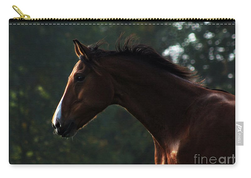 Horse Carry-all Pouch featuring the photograph Portrait Of A Horse by Angel Ciesniarska
