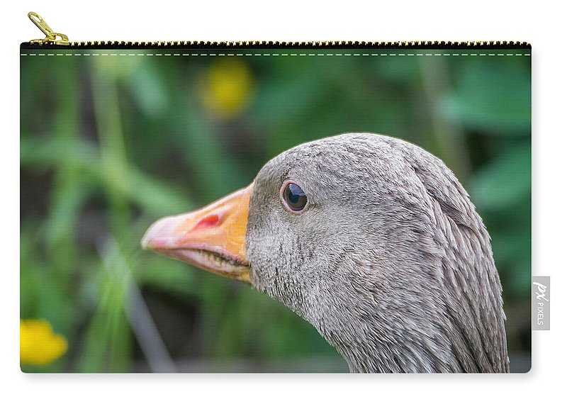 Photography Carry-all Pouch featuring the photograph Portrait Of Greylag Goose, Iceland by Panoramic Images